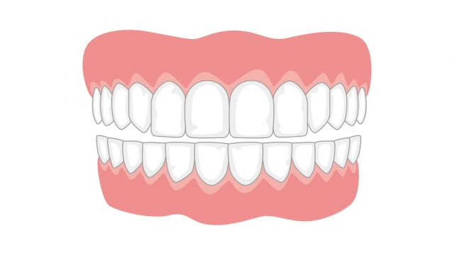 Jaw with teeth on white background, medicine concept. Vector illustration.